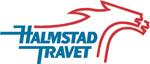 Halmstadtravet